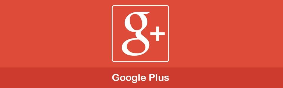 تأثیر فعالیت در گوگل پلاس Google Plus بر سئو