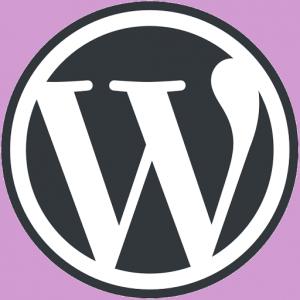 آموزش وردپرس توسط codex wordpress